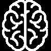 mozg-ludzki